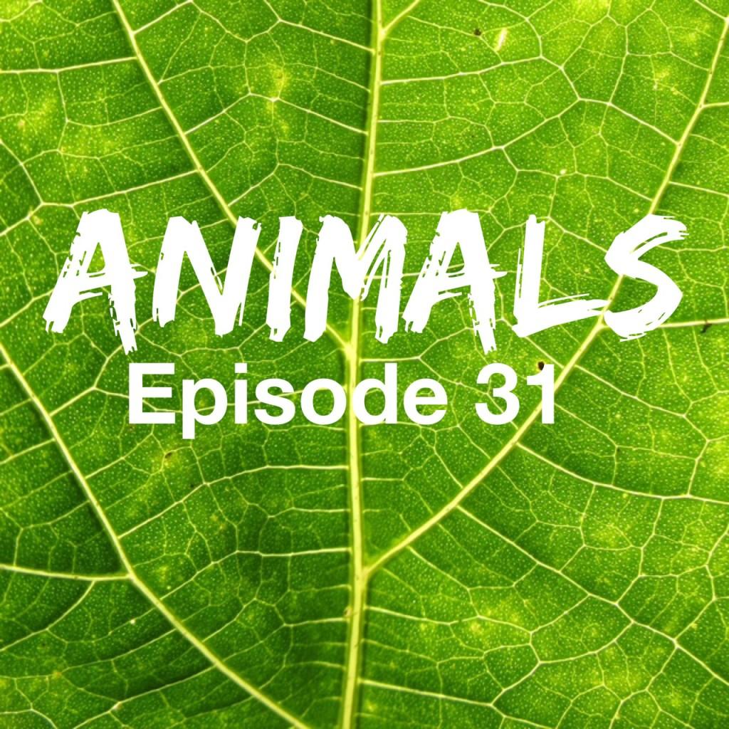 diálogo en ingles de animales